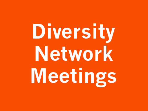 Diversity at Network Meetings
